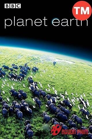 Hành Trình Trái Đất