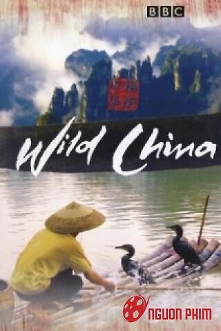 Thiên Nhiên Hoang Dã Trung Quốc