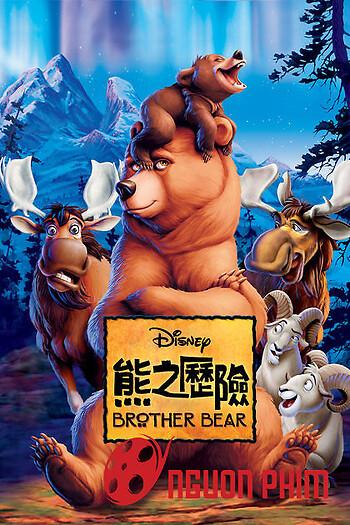 Anh Em Nhà Gấu phần 2
