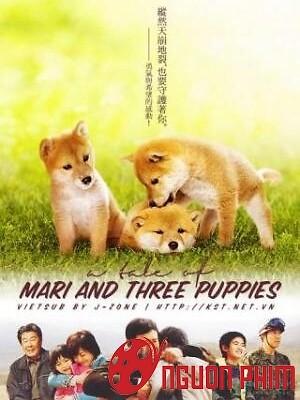 Mari Và 3 Chú Chó Nhỏ